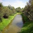 Riqualificazione torrente Crostolo (1)