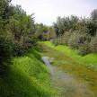 Riqualificazione torrente Crostolo (2)